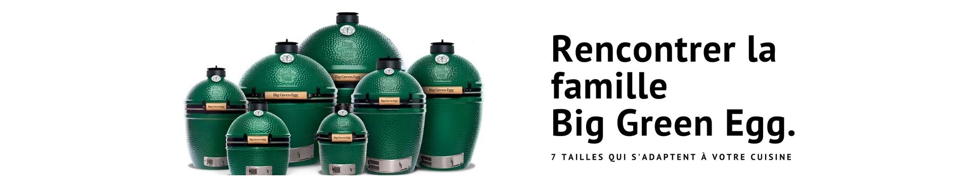 Marque Big Green Egg
